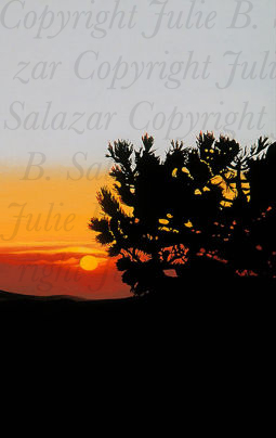 A Peaceful End - Southwest Landscape Print Series